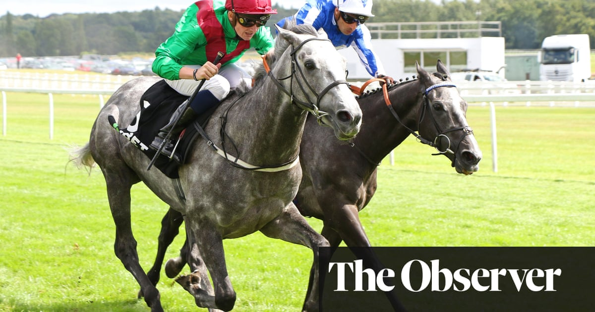 Gutsy Newbury win puts Technician back in frame for success in St Leger