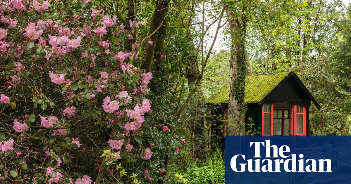 Linn Botanic Gardens: A Scottish Arcadia – in pictures   Books   The