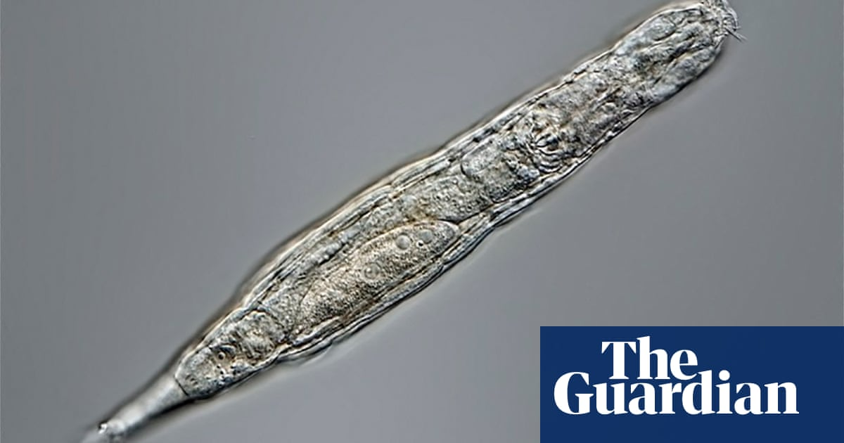 24,000-year-old organisms found frozen in Siberia can still reproduce