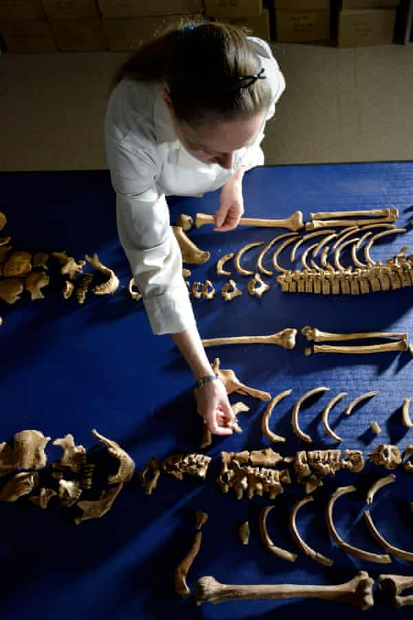 Skeletons from Durham cathedral