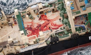 The blood-stained deck of the Japanese whaling vessel Nisshin Maru in January 2014.