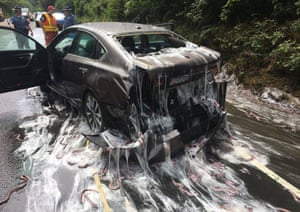 Slime eels, otherwise known as Pacific hagfish, cover Highway 101 after a truck carrying them overturned near Depoe Bay, Oregon.
