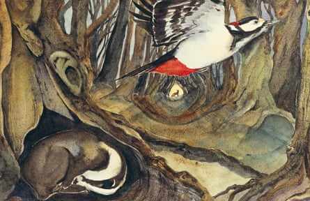 Woodpecker and badger illustration from The Lost Spells