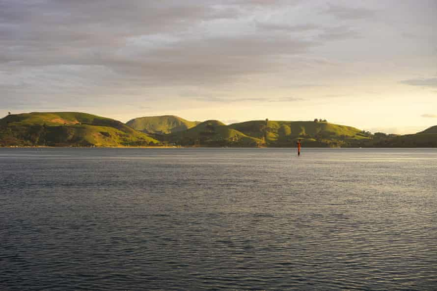 The green hills of Otago Peninsula as viewed from Otago Harbour.