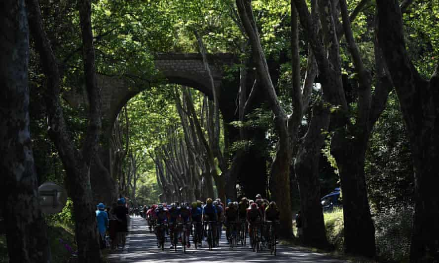 The pack passes under a bridge on a road lined with trees during the sixteenth stage around Nimes
