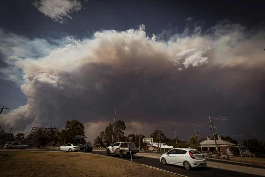 The smoke plume from the merged W-Tree and Barmah Spur fires