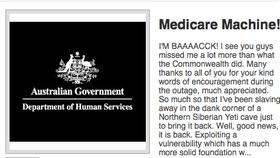 A screenshot from a darknet auction site