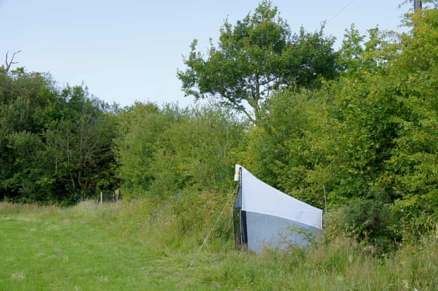 A malaise trap set by Rob Wolton to capture insects during his hedgerow study.