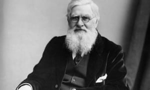 Alfred Russel Wallace (1823-1913) developed a theory of natural selection at the same time as Charles Darwin, based on studies made in the Malay Archipelago.