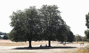 A picnic in the shade in Beckenham Place park in Lewisham, south London