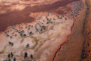 Satellite images have shown improved plant cover and productivity in the swales (the area between sand dunes) under Bush Heritage management
