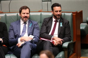 Labor's Ed Husic and Tim Hammond taunt the government during question time.