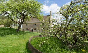 The tree upon which the apple is said to have fallen on Sir Isaac Newton's head in front of Woolsthorpe Manor, Colsterworth, Lincolnshire