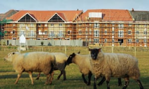 Housing development in Ashford, Kent