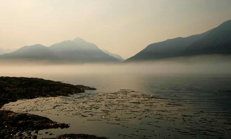 Spectral visions … Vancouver Island, the setting for The Glass Hotel.