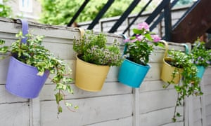 Planters that hook over a fence or balcony maximise space.