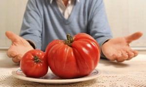 Man shows off big tomato
