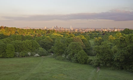 Colin Ball, the government's planning inspector, said the proposed building would cause significant harm to the views of Hampstead Heath (pictured).