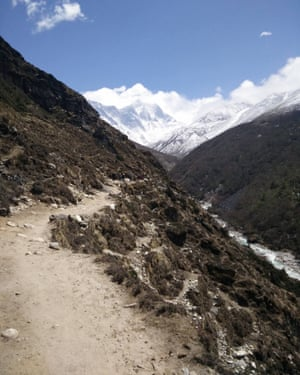 Plant life is expanding in the area around Mount Everest, such as along this footpath.