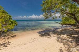 The beach on the west side of Abalone Caye, where the marine ranger station is based
