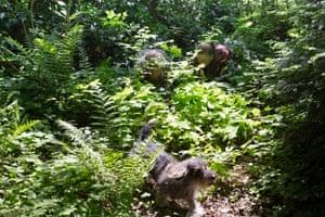 Krõõt Juurak and Alex Bailey crawl through the forest after a dog