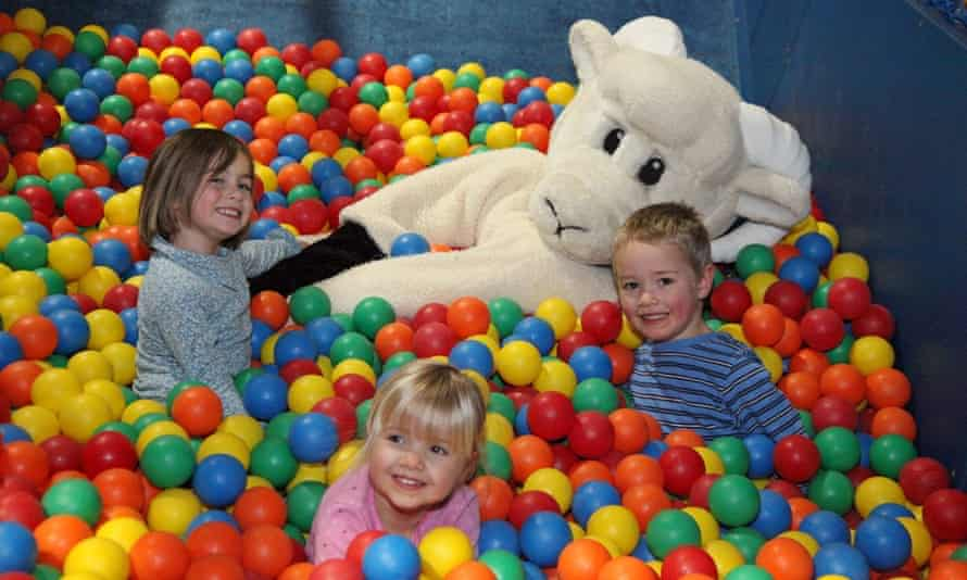 The ball pit in the soft play area at Willows Activity Farm.