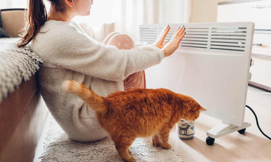 A woman sitting by  a heater with a cat warms her hands