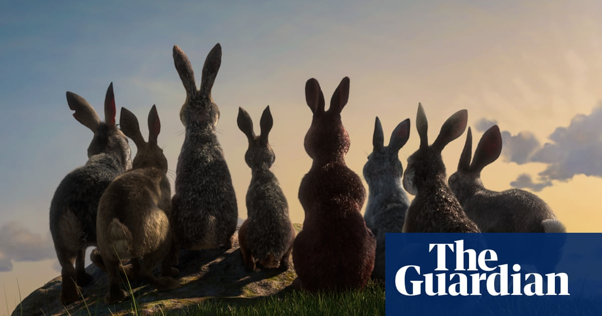 Watership Down: 'true meaning' revealed ahead of remake
