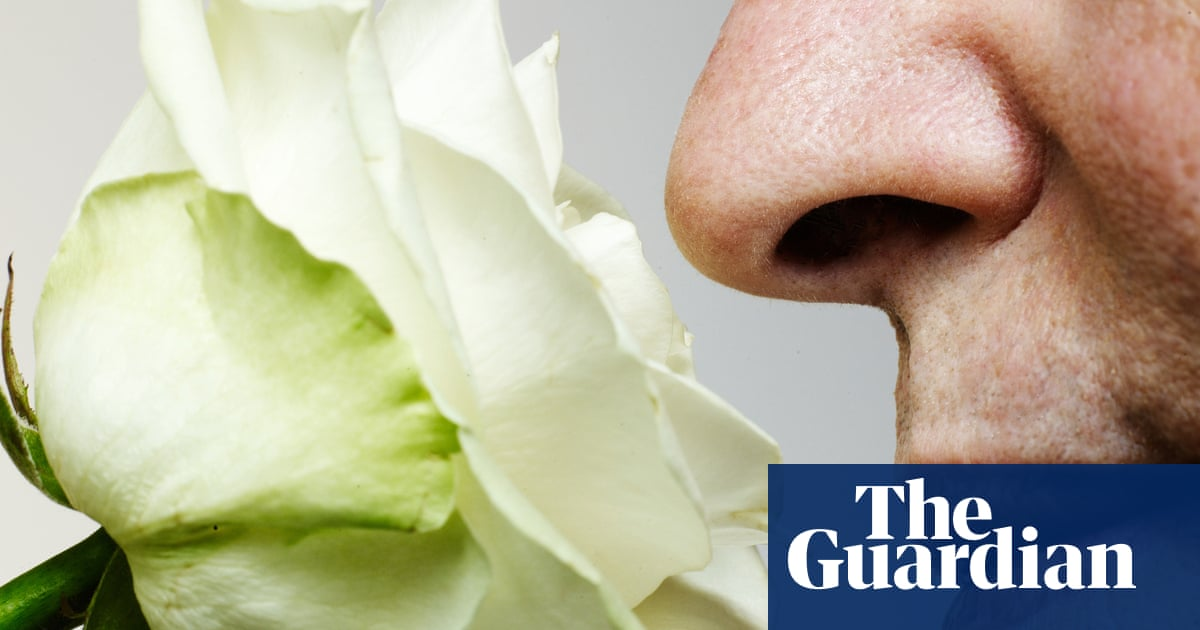 'Smell training' recommended for Covid anosmia
