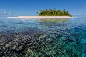 Coral in the Funafuti atoll
