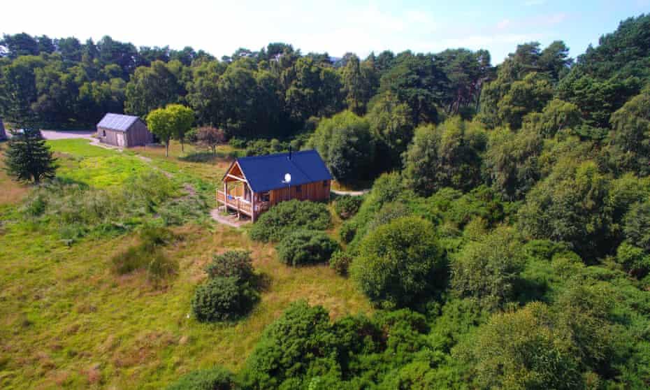 Birdwatcher's Cabin view