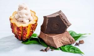 Swiss chocolate maker Barry Callebaut's new WholeFruit chocolate