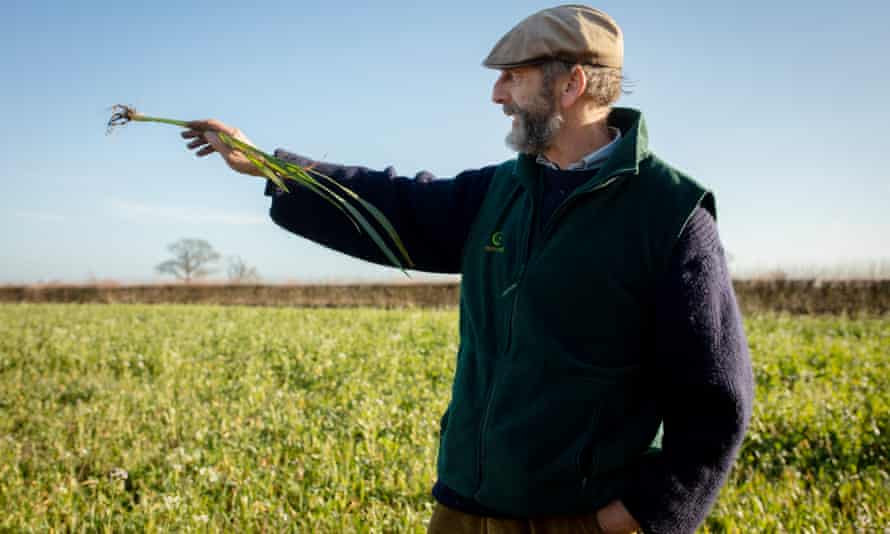 John Cherry holding a plant in one of his fields