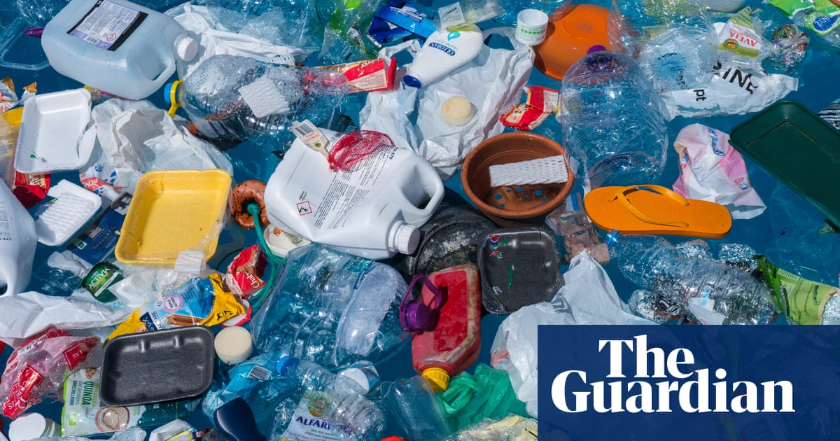Welcome to the 'plastisphere': the synthetic ecosystem evolving at sea