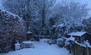 Margo Bekkering's garden after the snow in Amersham