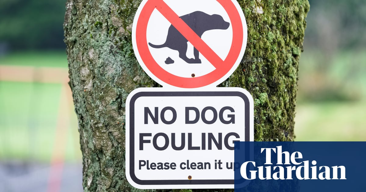 Still binning your mutt's mess? Eco-friendly pet owners need a dog poo wormery