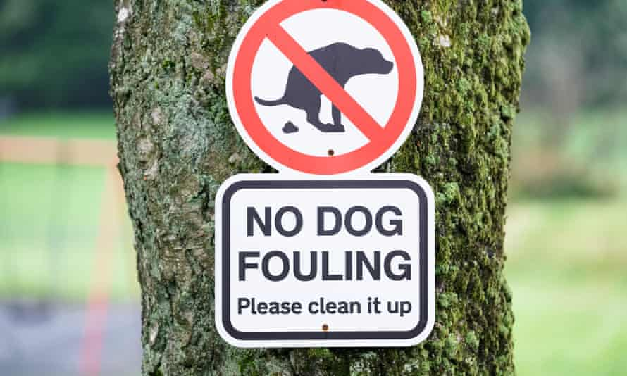 No dog fouling sign in play park
