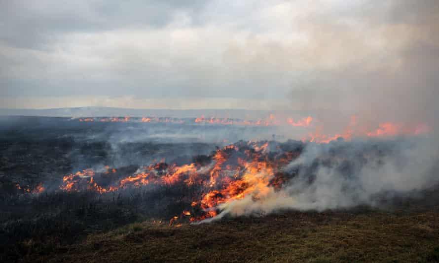 Burning moorland