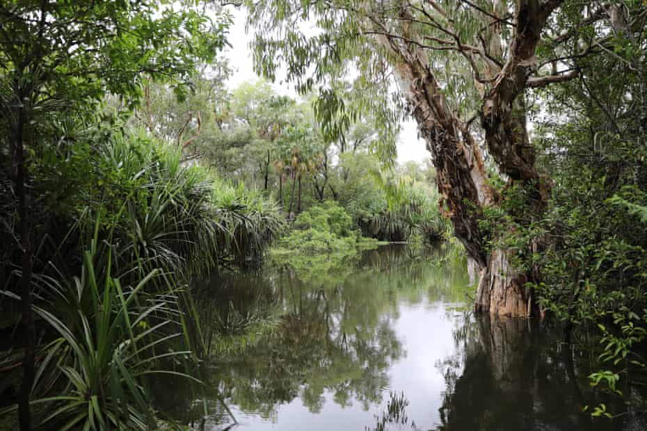 The bush, the wetlands, the desert … there are plenty of places to get lost in NT