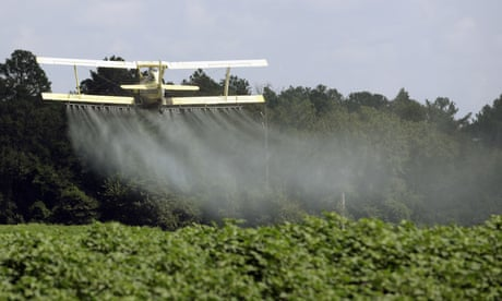 Pesticide residues found in 70% of produce sold in US even after washing