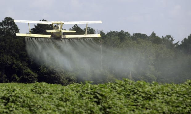 A study shows that eating organic can dramatically decrease the pesticides you're exposed to.