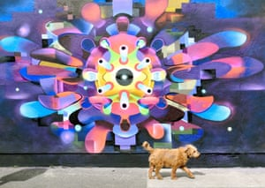 Dublin, Ireland A dog walks past a mural depicting a coronavirus cell