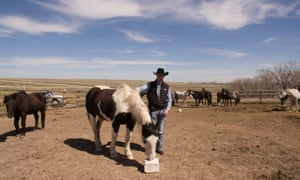 South Dakota state senator Troy Heinert tends to his rodeo horses on the Rosebud Indian Reservation.