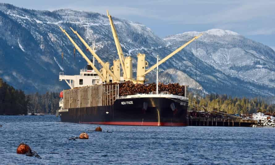 A ship being loaded with logs just north of the Viking mill. The timber is bound for China.