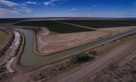 Cotton farm irrigation channels
