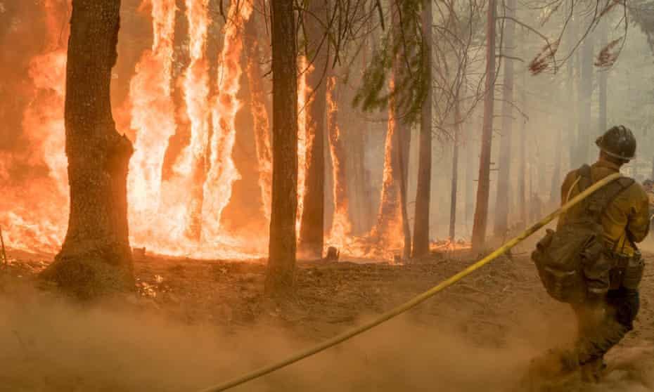A wildfire burns near Yosemite national park.