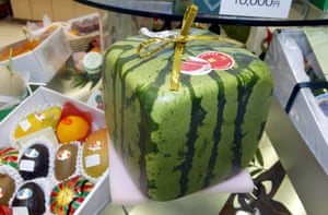 A square watermelon sits in a department store in Tokyo. They sell for about USD$80