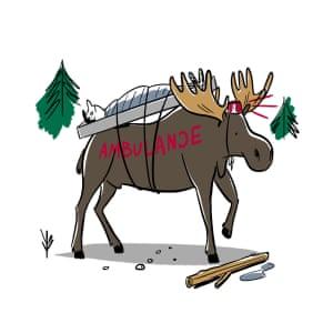 Illustration of a moose as an ambulance