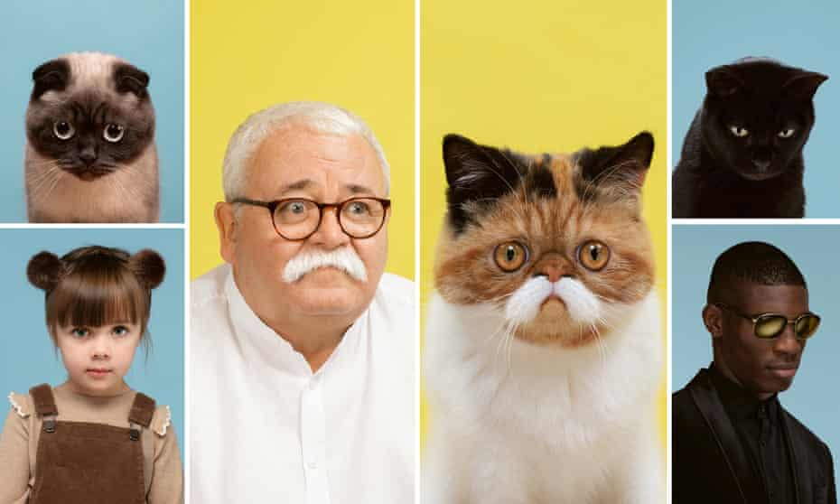 Cats and their owners by Gerrard Gethings