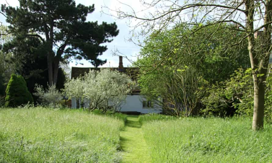 A mowed path leading to Morris's former workshop.